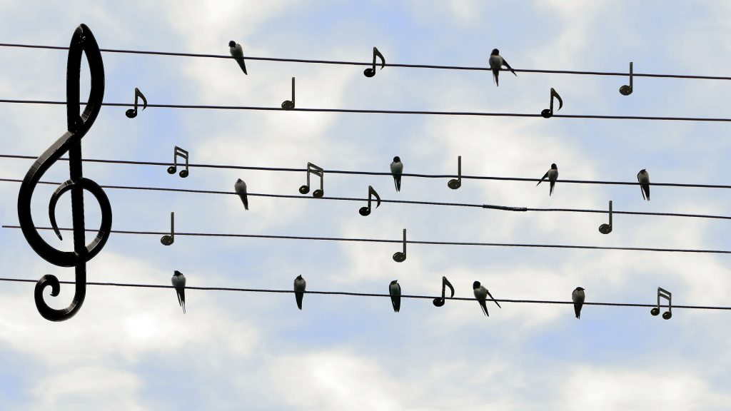 Karaoke Sound System | Fukuda Blog